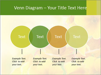 Yellow flowers PowerPoint Template - Slide 32