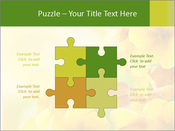 Yellow flowers PowerPoint Template - Slide 43