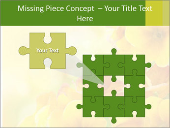 Yellow flowers PowerPoint Template - Slide 45