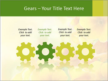 Yellow flowers PowerPoint Template - Slide 48