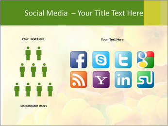 Yellow flowers PowerPoint Template - Slide 5