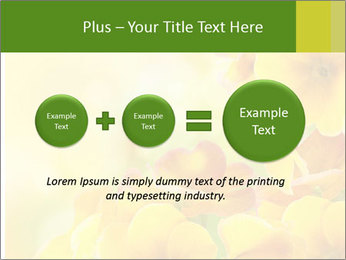 Yellow flowers PowerPoint Template - Slide 75