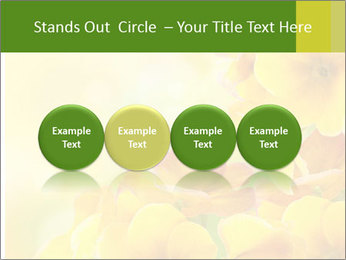 Yellow flowers PowerPoint Template - Slide 76