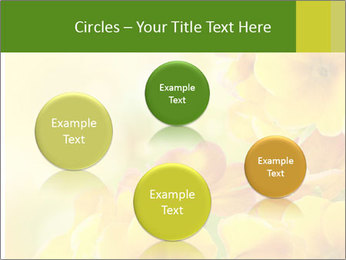 Yellow flowers PowerPoint Template - Slide 77
