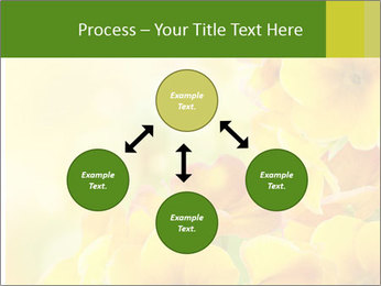 Yellow flowers PowerPoint Template - Slide 91