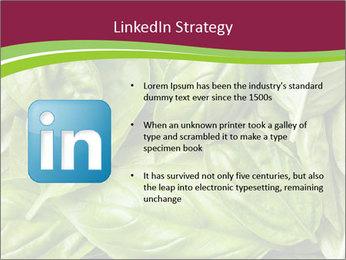 The fresh basil leaves PowerPoint Template - Slide 12