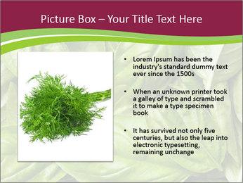 The fresh basil leaves PowerPoint Template - Slide 13