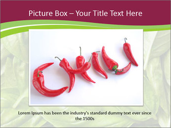 0000087979 PowerPoint Template - Slide 16