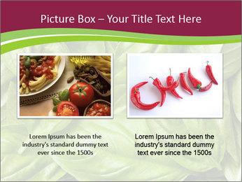 The fresh basil leaves PowerPoint Template - Slide 18
