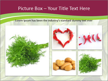 0000087979 PowerPoint Template - Slide 19