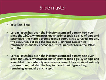0000087979 PowerPoint Template - Slide 2