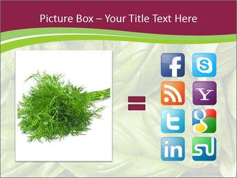 The fresh basil leaves PowerPoint Template - Slide 21