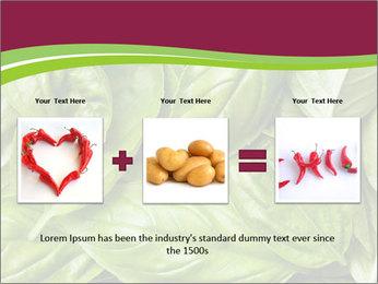 The fresh basil leaves PowerPoint Template - Slide 22