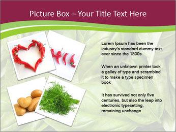 The fresh basil leaves PowerPoint Template - Slide 23