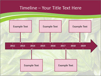 The fresh basil leaves PowerPoint Template - Slide 28