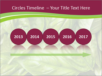 0000087979 PowerPoint Template - Slide 29