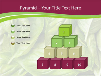 0000087979 PowerPoint Template - Slide 31