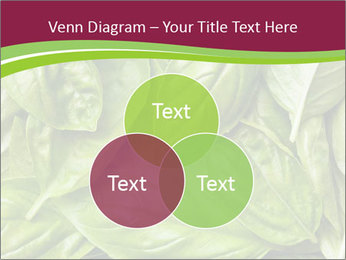 0000087979 PowerPoint Template - Slide 33