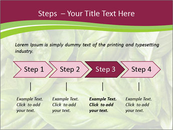 The fresh basil leaves PowerPoint Template - Slide 4