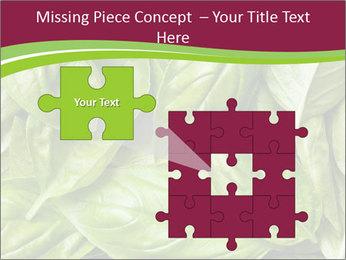 The fresh basil leaves PowerPoint Template - Slide 45