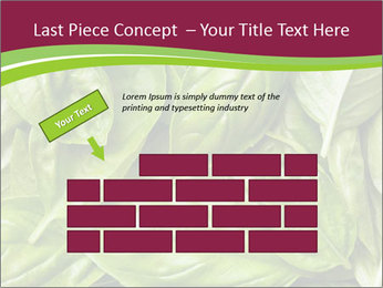 0000087979 PowerPoint Template - Slide 46
