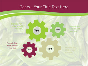 0000087979 PowerPoint Template - Slide 47