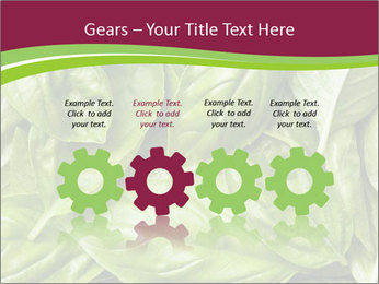 0000087979 PowerPoint Template - Slide 48