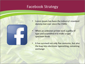 The fresh basil leaves PowerPoint Template - Slide 6