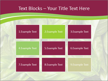 0000087979 PowerPoint Template - Slide 68