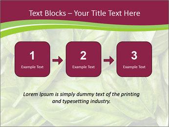 The fresh basil leaves PowerPoint Template - Slide 71
