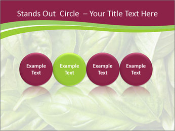 0000087979 PowerPoint Template - Slide 76