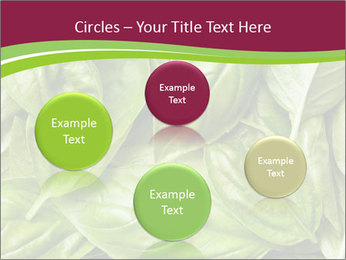 0000087979 PowerPoint Template - Slide 77