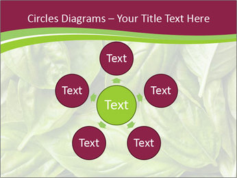 0000087979 PowerPoint Template - Slide 78