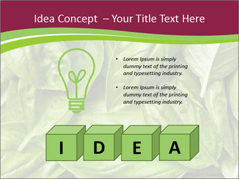 0000087979 PowerPoint Template - Slide 80