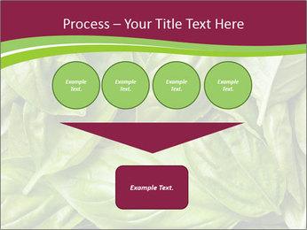 The fresh basil leaves PowerPoint Template - Slide 93