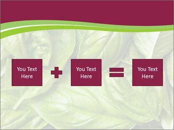 The fresh basil leaves PowerPoint Template - Slide 95