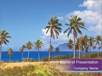 Palm trees PowerPoint Template - Slide 1