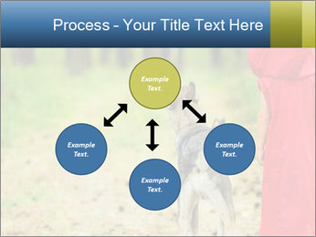 The girl with a wolf PowerPoint Templates - Slide 91
