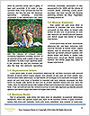 0000087988 Word Templates - Page 4