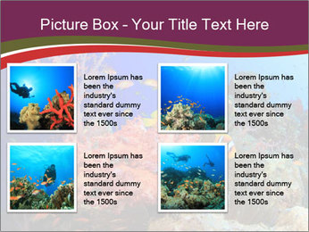 Corals PowerPoint Template - Slide 14