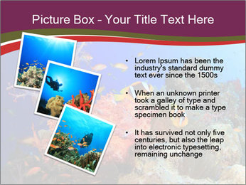 Corals PowerPoint Template - Slide 17