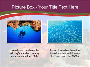 Corals PowerPoint Template - Slide 18