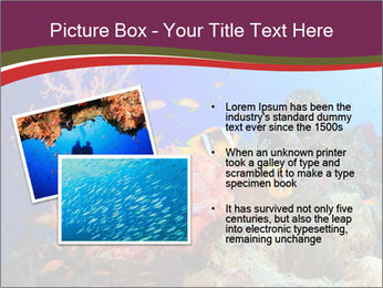 Corals PowerPoint Template - Slide 20