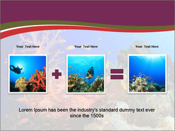 Corals PowerPoint Template - Slide 22