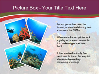 Corals PowerPoint Template - Slide 23