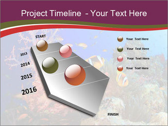 Corals PowerPoint Template - Slide 26