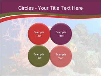 Corals PowerPoint Template - Slide 38