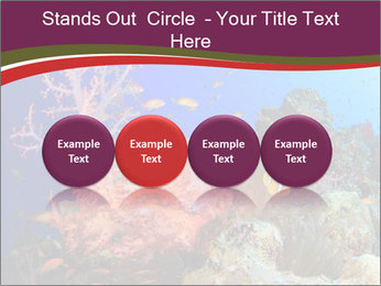 Corals PowerPoint Template - Slide 76