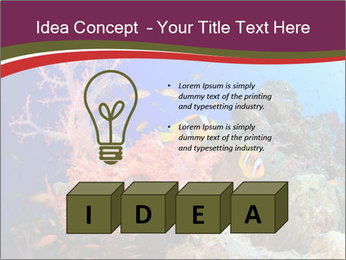 Corals PowerPoint Template - Slide 80