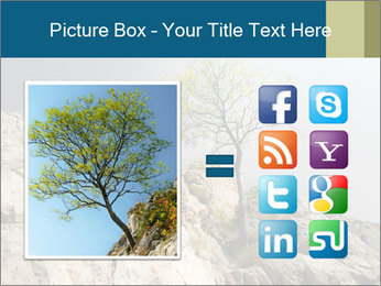 Lonely tree hanging from rocks PowerPoint Templates - Slide 21